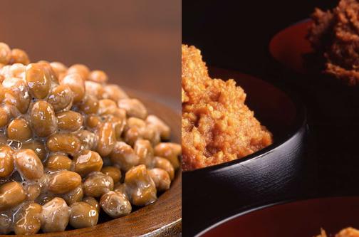 味噌 納豆